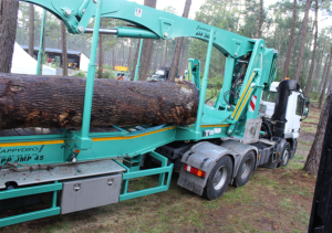 Grue forestière 45-T appydro